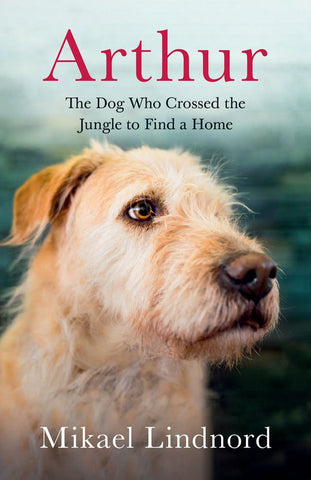 Arthur: The Dog who Crossed a Jungle to find a Home by Mikael Lindnord