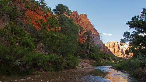 Hiking the North Fork of the Virgin River in Zion National Park.