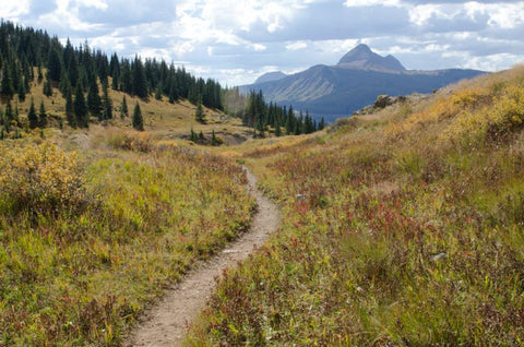 Hiking trail to Crater Lake in Durango, CO