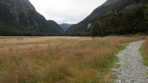Hiking New Zealand's Routeburn Track near Queenstown on the South Island