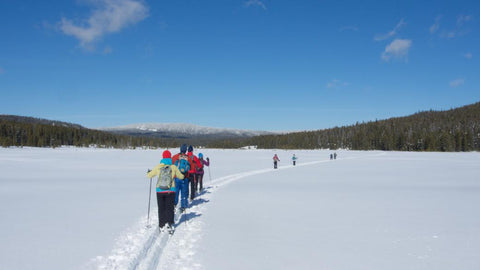 Nordic Skiing in Yellowstone National Park