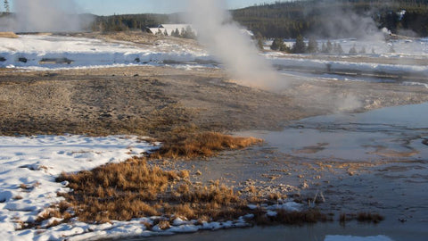 Yellowstone geyser in winter