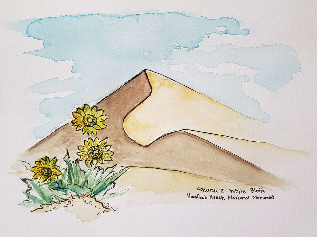 White Bluffs, Hanford Reach Watercolor Sketch