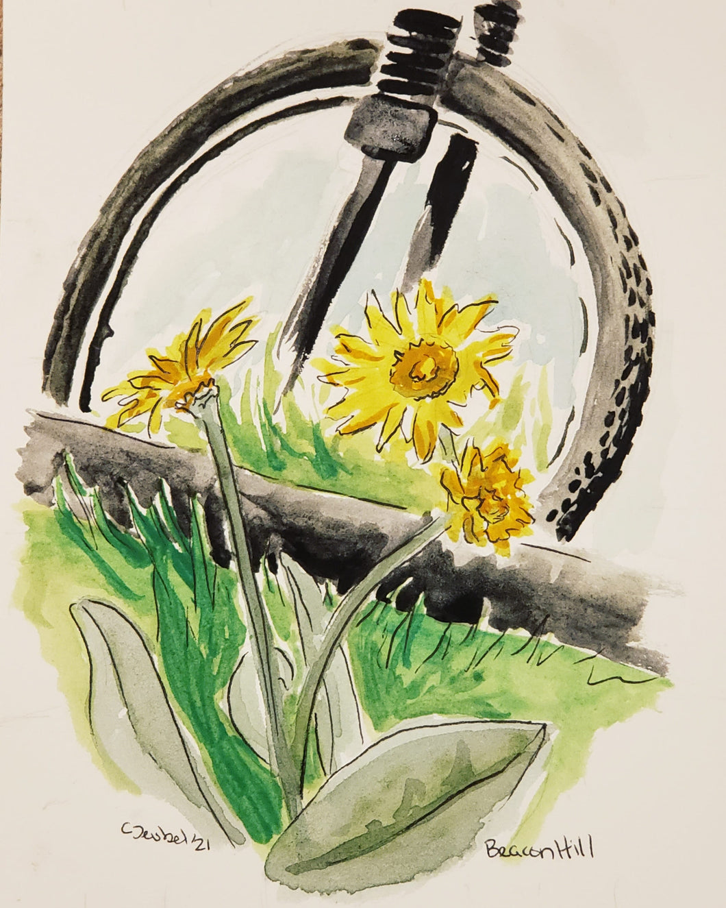 Beacon Hill Mountain Bike Park Watercolor Sketch