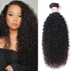 Brazilian Virgin Hair 100% Human Hair Kinky Curly (#1B Natural Black)