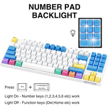 Load image into Gallery viewer, HAVIT KB487L TKL Mechanical Keyboard with 89 Keys PBT Keycaps