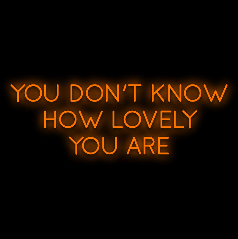 You Are Lovely Neon Sign