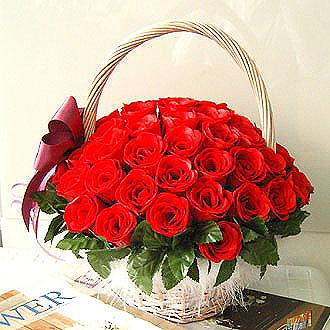 Love For Red flowers Mayaflowers