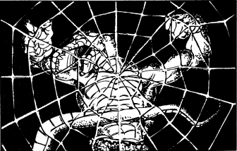 Art Depicting the 'Web' spell from Moldvay Basic