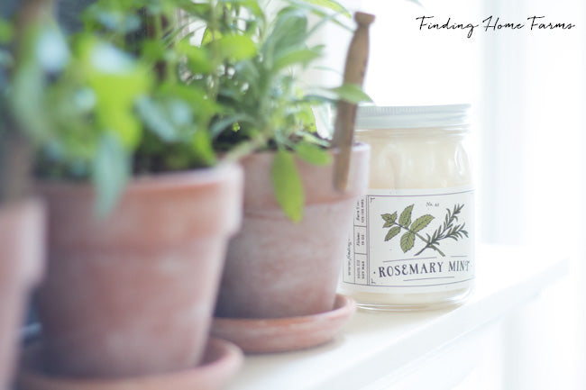 Herb-Soy-Candle-Rosemary-Mint copy