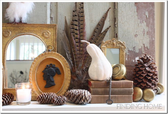 Owls, Feather, Gourds, Fall Mantel, Vintage Door