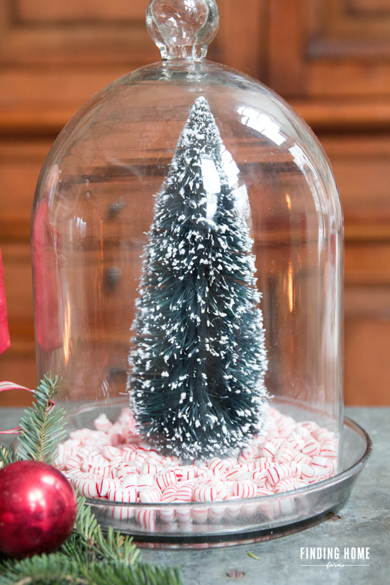 Peppermint-Candy-Tree-Cloche-Christmas