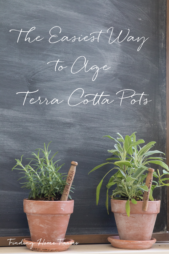 The-easiest-way-to-age-terra-cotta-pots