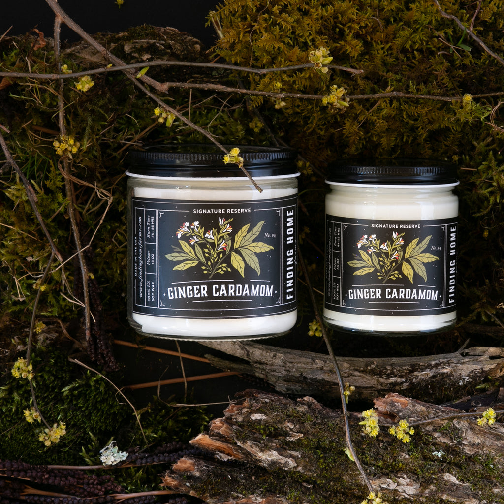 Ginger Cardamom Soy Candles - Earthy Scented Candle - Finding Home Farms