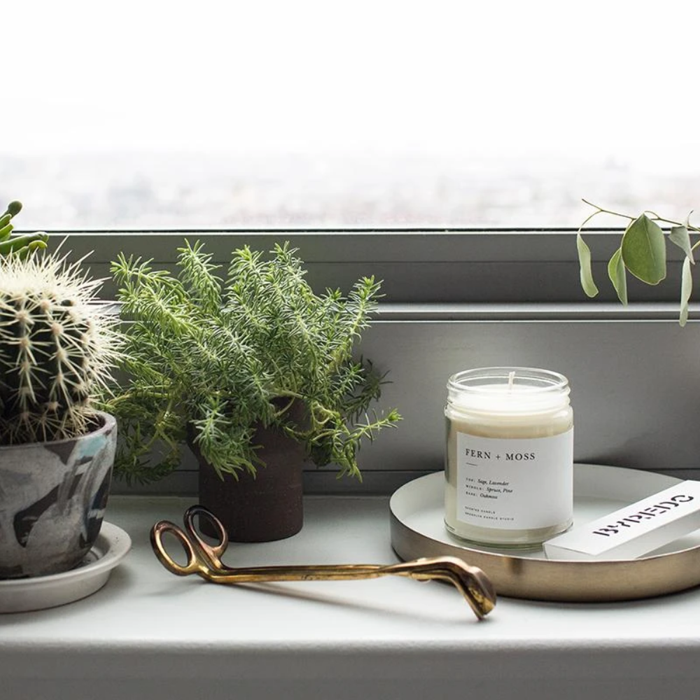 Minimalist Glass Candle | Fern + Moss - Coco and Duckie