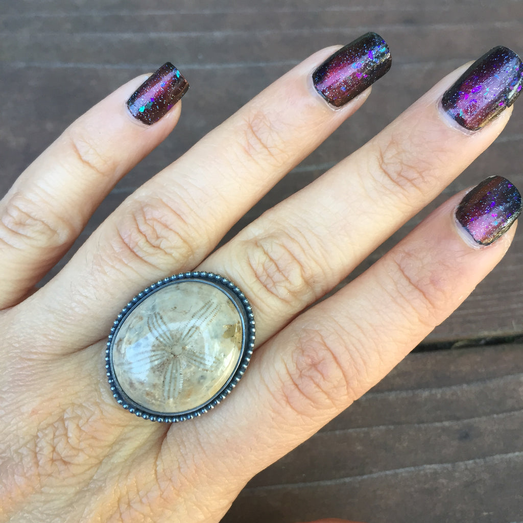 Fossilized Sand Dollar Ring - Sterling Silver 925 Fossil Specimen Art Jewelry - Size 9