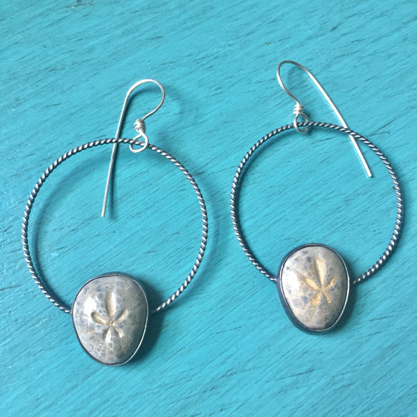 Fossilized Sand Dollar Hoop Earrings - Sterling Silver 925 Twisted Fossil Hoops - Stone Specimen Wearable Art Jewely
