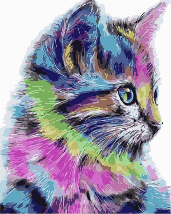 Colourful Kitten, 40x50 cm