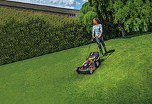 Load image into Gallery viewer, WORX WG743E.1 36V (40V Max) Cordless 40cm Lawn Mower (Dual x2 4.0Ah Batteries)