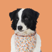 Load image into Gallery viewer, Dog Bandanas - Small Floral in Orange