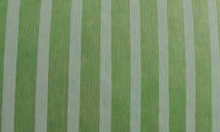 Jewel-Toned Cotton Lime Green Stripes