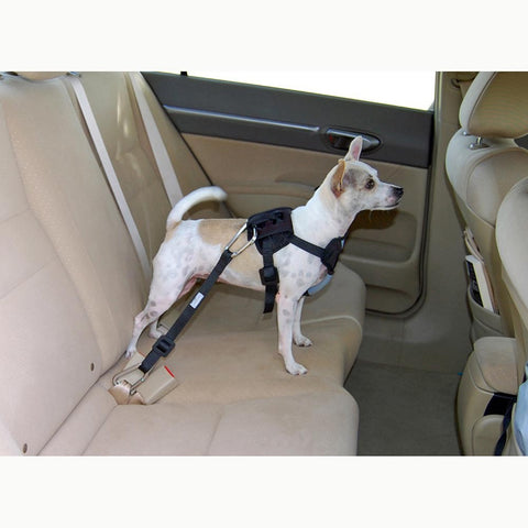 Bergan Travel Safety Harness