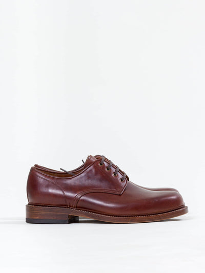 Uncle Bright, Derby, Chestnut Brown