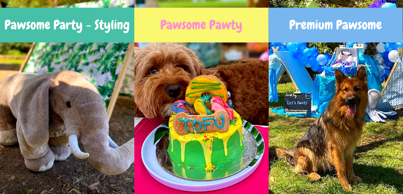pawty packages