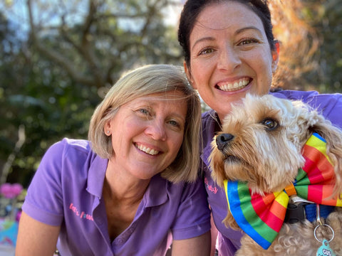 sydney's premier dog party planning and online store accessories