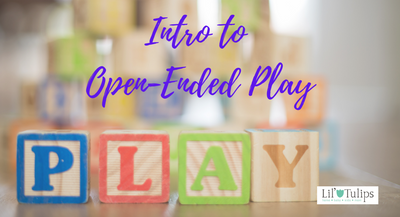 Introduction to Open-Ended Play