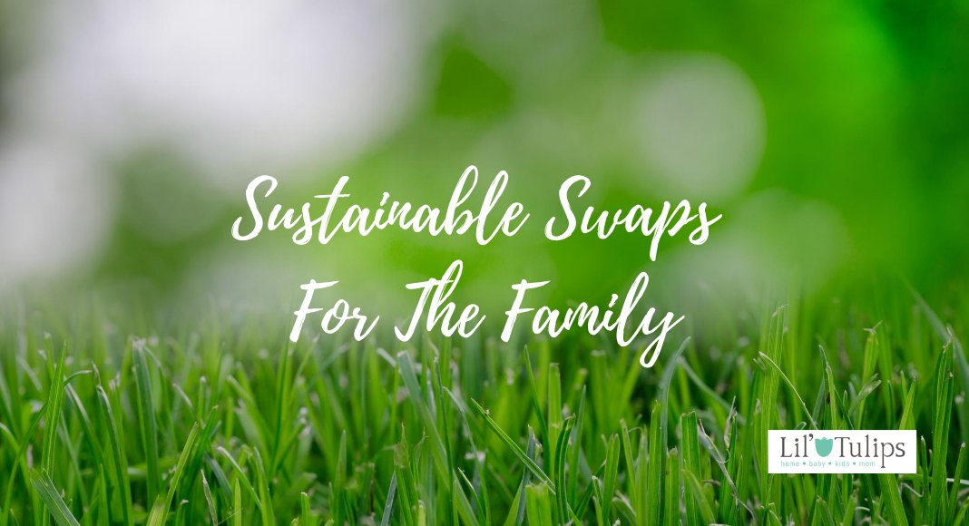 Sustainable Swaps For The Family