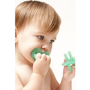 Molar Muncher Teether - Lil Tulips