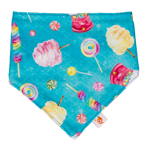 Sweet Adventure Bandana Bib