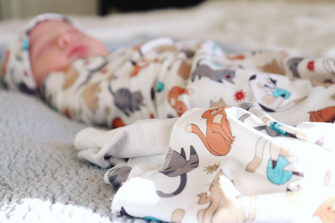 Felix Stretch Swaddle Set