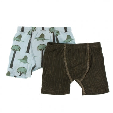 Boxer Briefs Set Dimetrodon and Petrified Wood - 2T-3T
