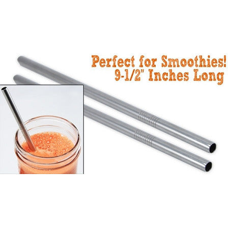Ecojarz Stainless Steel Smoothie Straws [2 pack] - Lil Tulips - 1