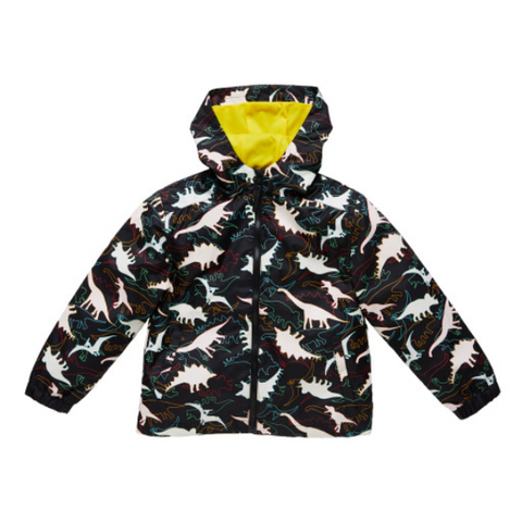 Dinosaur Color Changing Rain Coat