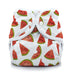 Thirsties Duo Wrap Diaper Cover - Lil Tulips - 35