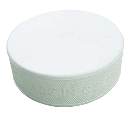 Pro Guard White Training Puck