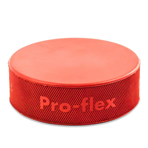 Pro Guard Orange Weighted Puck (10 oz.)