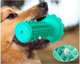 Pup Toothbrush and Squeak Toy