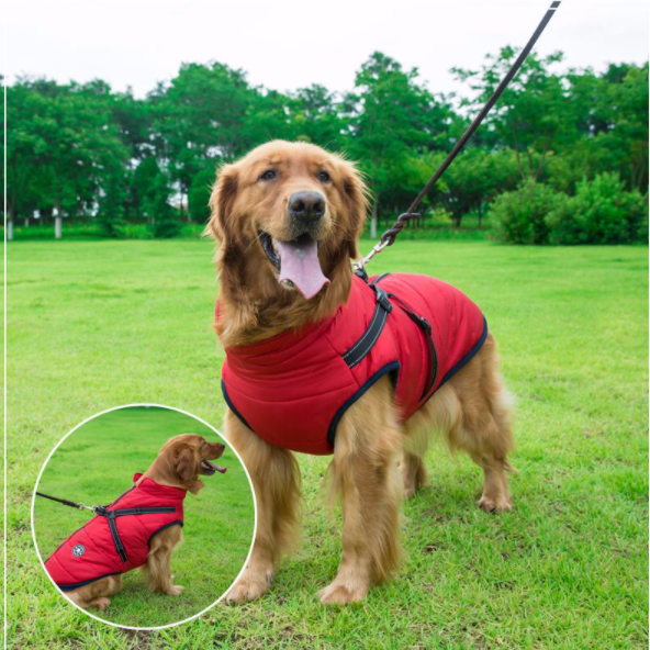 Waterproof Winter Dog Coat