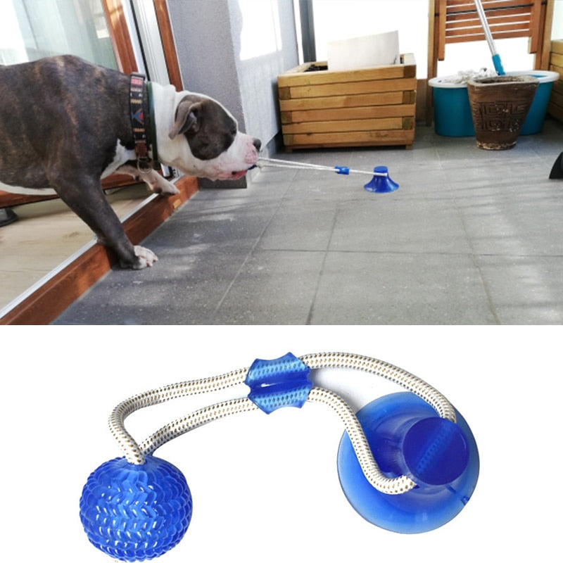 Suction Cup Dog Rope Toy