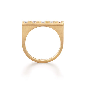 Circle of 5th's Diamond Bar Ring