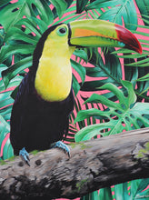 Load image into Gallery viewer, Limited Edition Toucan Art Print