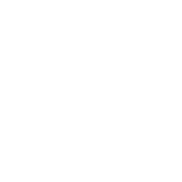 DLW WATCHES