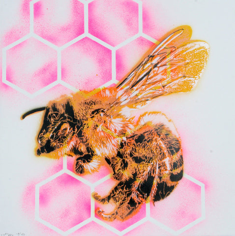 Bee (Hot Pink)