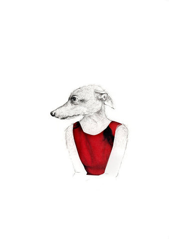 Little Animal - Whippet