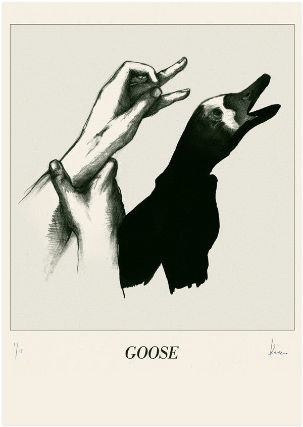 In The Shadows - Goose