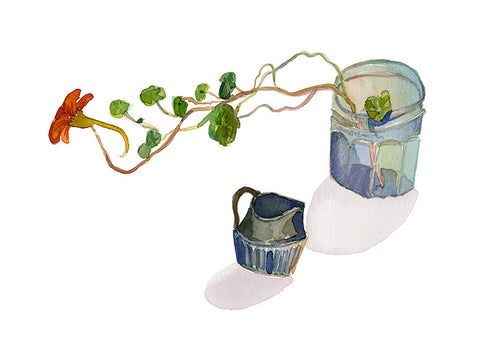 Jar of Nasturtium and Jug